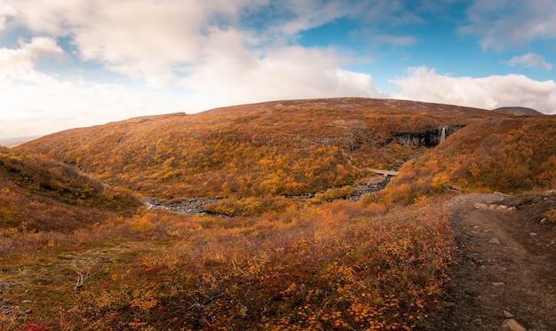 Svartifosswaterval in het nationale park van skaftafell in zuid-ijsland.