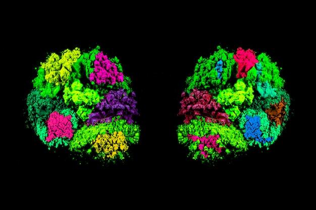 Symmetrie van de kleurrijke kleuren van het holipoeder over zwarte achtergrond