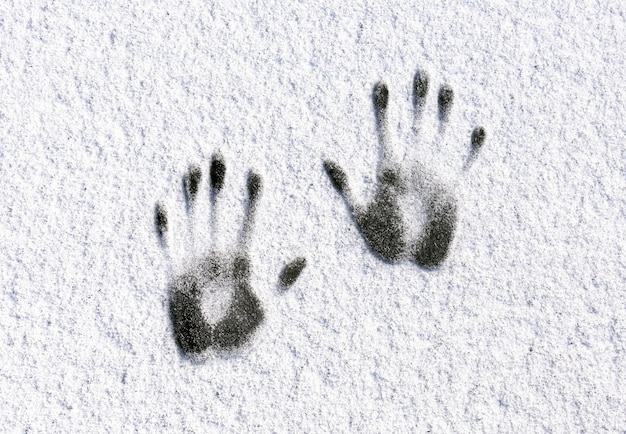 Symmetrische menselijke handafdrukken op witte sneeuw. winterconcept.