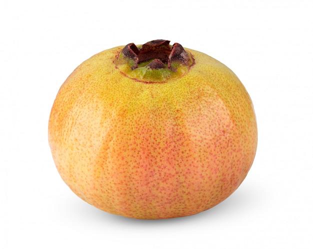 Syzygium jambos of djamboevrucht op wit wordt geïsoleerd dat