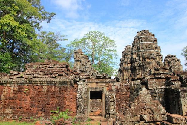 Ta prohm-tempel, siem reap, cambodja.