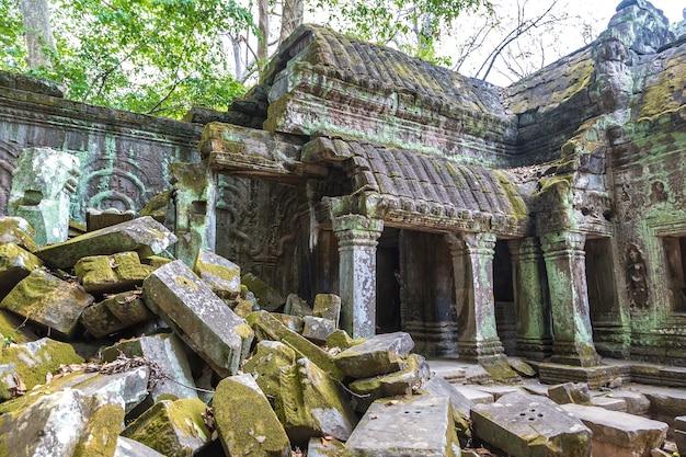 Ta prohm tempelruïnes in angkor wat in siem reap, cambodja