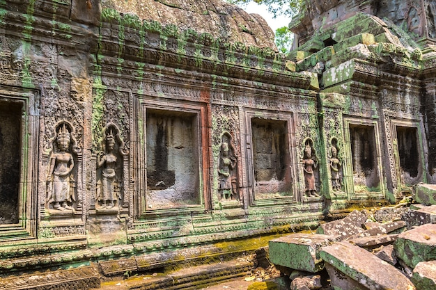 Ta prohm tempelruïnes in angkor wat in siem reap