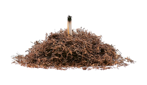 Tabak geïsoleerd op wit