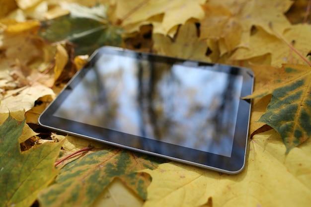 Tablet liggend in bladeren