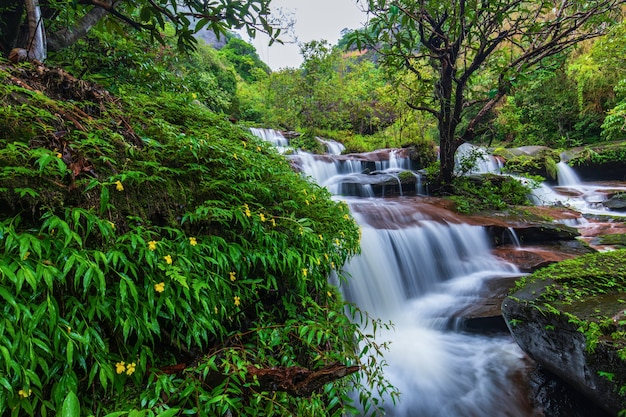 Tad-wiman-thip-waterval, mooie waterval in thailand.