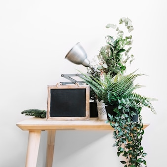 Tafel met leisteen, lamp en planten