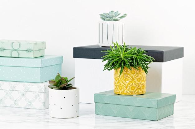 Tafelblad met vakken voor arrangement, starage en planten in potten. gezellig en comfortabel huisconcept