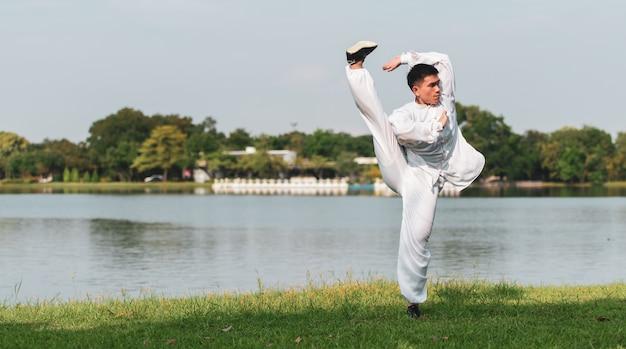 Tai chi chuan master training in het park, chinese vechtsportentraining.