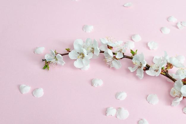 Tak van abrikoos en gevallen bloemblaadjes