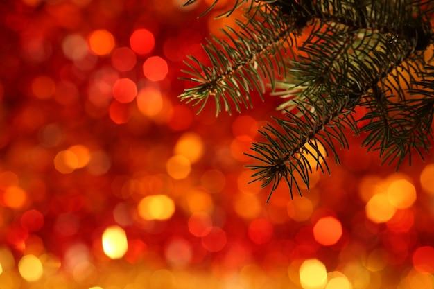 Tak van kerstboom tegen rood licht achtergrond