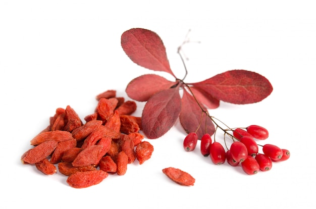 Tak van rijpe rode berberis en gedroogde gojibessen die op witte ruimte worden geïsoleerd