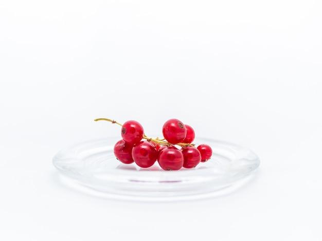 Tak van rode aalbessen in een glasplaat.