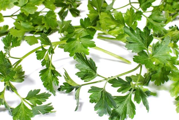 Takjes groene verse peterselie