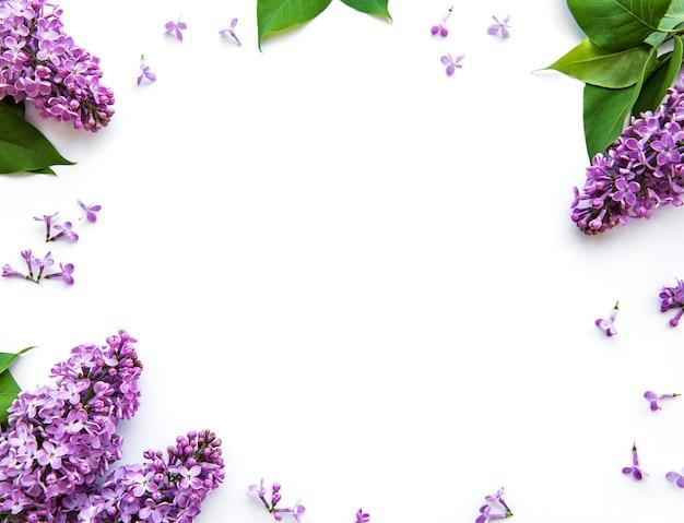 Takken en bloemen van lila