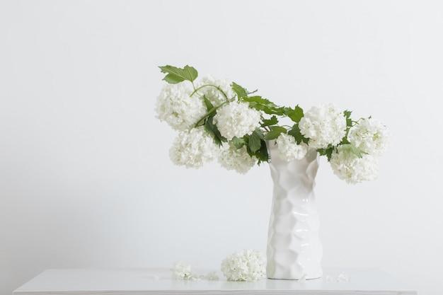 Takken van decoratieve viburnum in een vaas op witte achtergrond