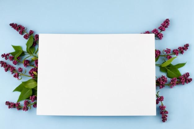 Takken van lila op een pastel blauwe achtergrond.