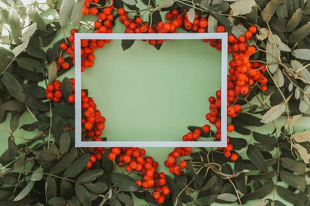 Takken van rode rijpe lijsterbes met witte verf op een groene achtergrond.