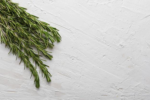 Takken van verse rozemarijn en groen. op een witte gestructureerde achtergrond.