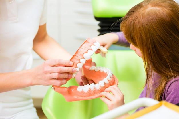 Tandarts die meisjes schoonmakende tand verklaart