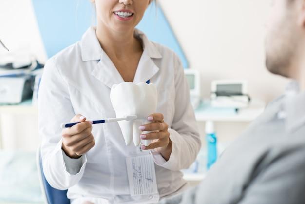 Tandarts die toont hoe tanden te borstelen