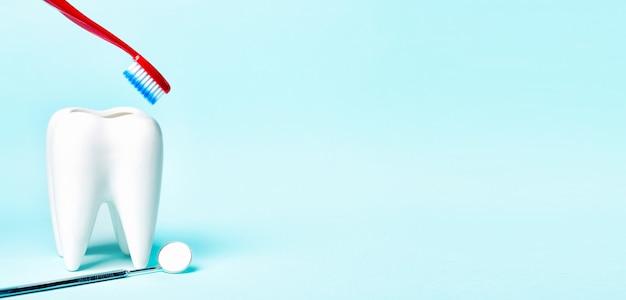 Tandspiegel dichtbij gezond wit tandmodel met tandenborstel op lichtblauwe achtergrond.