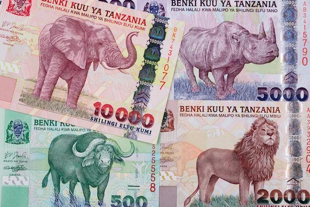 Tanzaniaanse shilling een zakelijk oppervlak