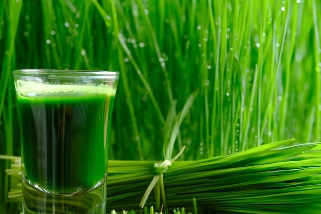 Tarwegrassap met ontsproten tarwe