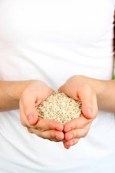 Tarwekorrel in vrouwelijke handen op natuurlijke ondergrond