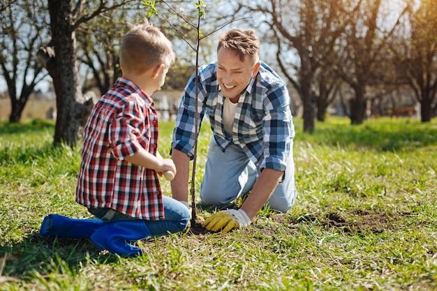 Team van vader en zoon breed grijnzend tijdens het planten van een nieuwe fruitboom in een achtertuin in het voorjaar