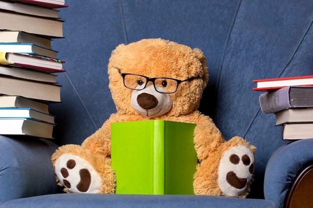 Teddy leest een boek op de stoel
