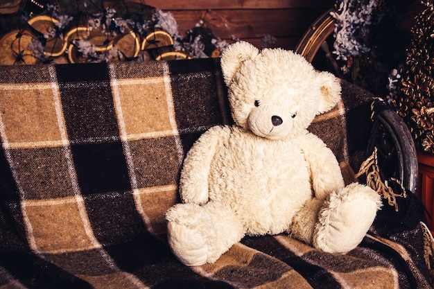 Teddybeer zit op de bank.