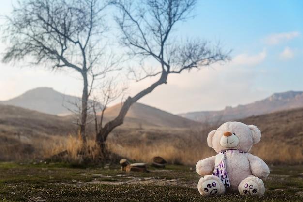 Teddybeerspeelgoed zittend onder een boom in de bergen