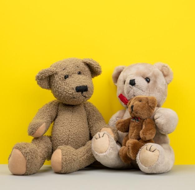 Teddyberen zitten, familie