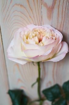 Teder stilleven met een roze roos voor moederdag of bruiloft in vintage stijl