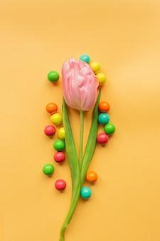 Tedere roze tulp en heel wat levendige kleurrijke ballen rond in centrum van pastelkleurgele achtergrond. plat leggen. kopieer ruimte. concept van internationale vrouwendag, moederdag, pasen. valentijnsdag liefdesdag.