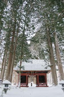 Tempel in sneeuwbos bij togakushiheiligdom, japan