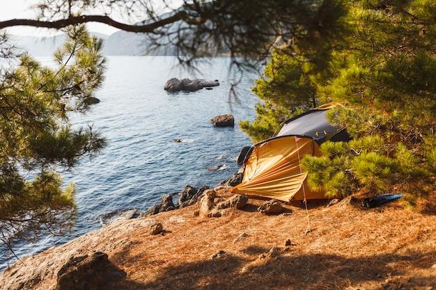 Tent op het strand onder de zon in de schaduw van jeneverbessen
