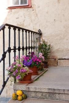 Terras met bloemen in potten. afbeelding met selectieve aandacht.