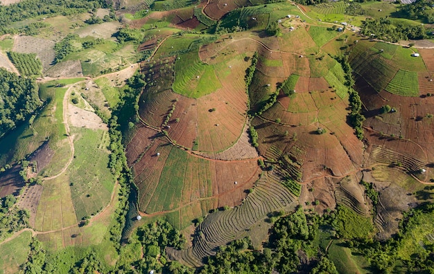 Terrasvormige padieveld in mae cham chiangmai noord-thailand. bovenaanzicht