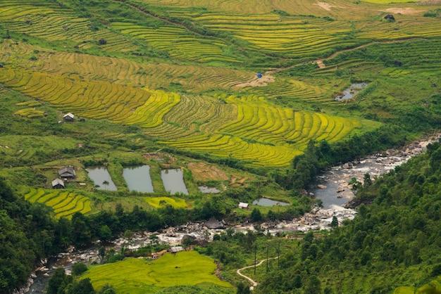 Terrasvormige rijst veld in mu cang chai, vietnam
