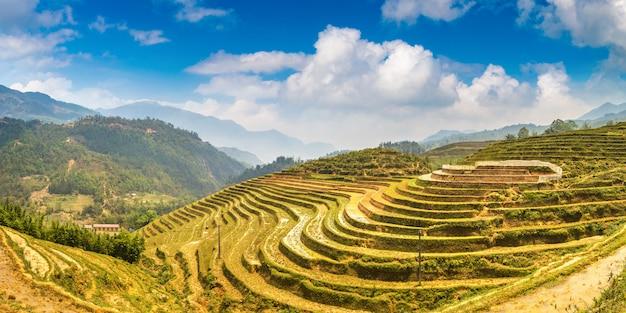 Terrasvormige rijst veld in sapa