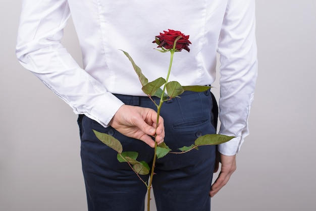 Terug achter achteraanzicht bijgesneden foto van knappe gelukkige vrolijke opgewonden mannelijke kerel die mooie rode roos in arm verbergt geïsoleerde grijze achtergrond