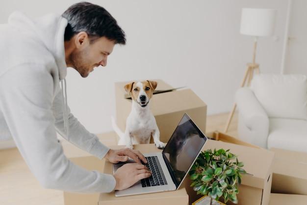 Tevreden hard werkende man bezig met het zoeken naar informatie op laptopcomputer die zich op kartonnen dozen bevindt, zijn huiselijk huisdier poseert dichtbij, beweegt zich in een nieuw appartement, een bank en een staande lamp. onroerend goed concept