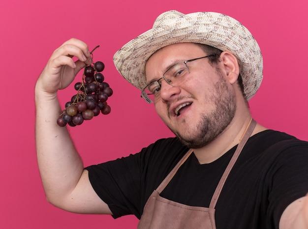 Tevreden jonge mannelijke tuinman die het tuinieren hoed draagt die druiven houdt die op roze muur worden geïsoleerd