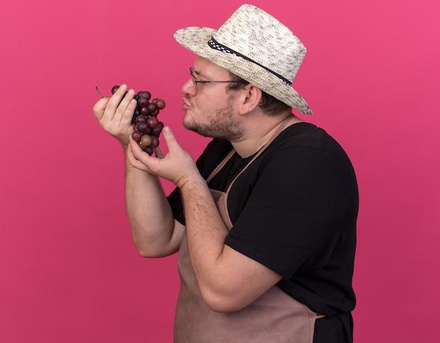 Tevreden jonge mannelijke tuinman die het tuinieren hoed draagt ?? en druiven bekijkt die op roze muur worden geïsoleerd