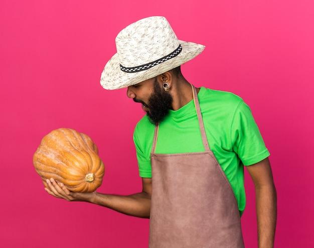 Tevreden jonge tuinman afro-amerikaanse man met een tuinhoed die vasthoudt en kijkt naar pompoen geïsoleerd op roze muur