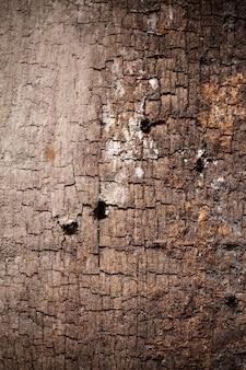 Textuur oud hout achtergrond.