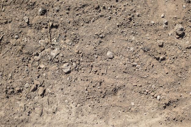 Textuur van de aarde met stenen