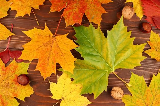 Textuur van de herfstbladeren op bord